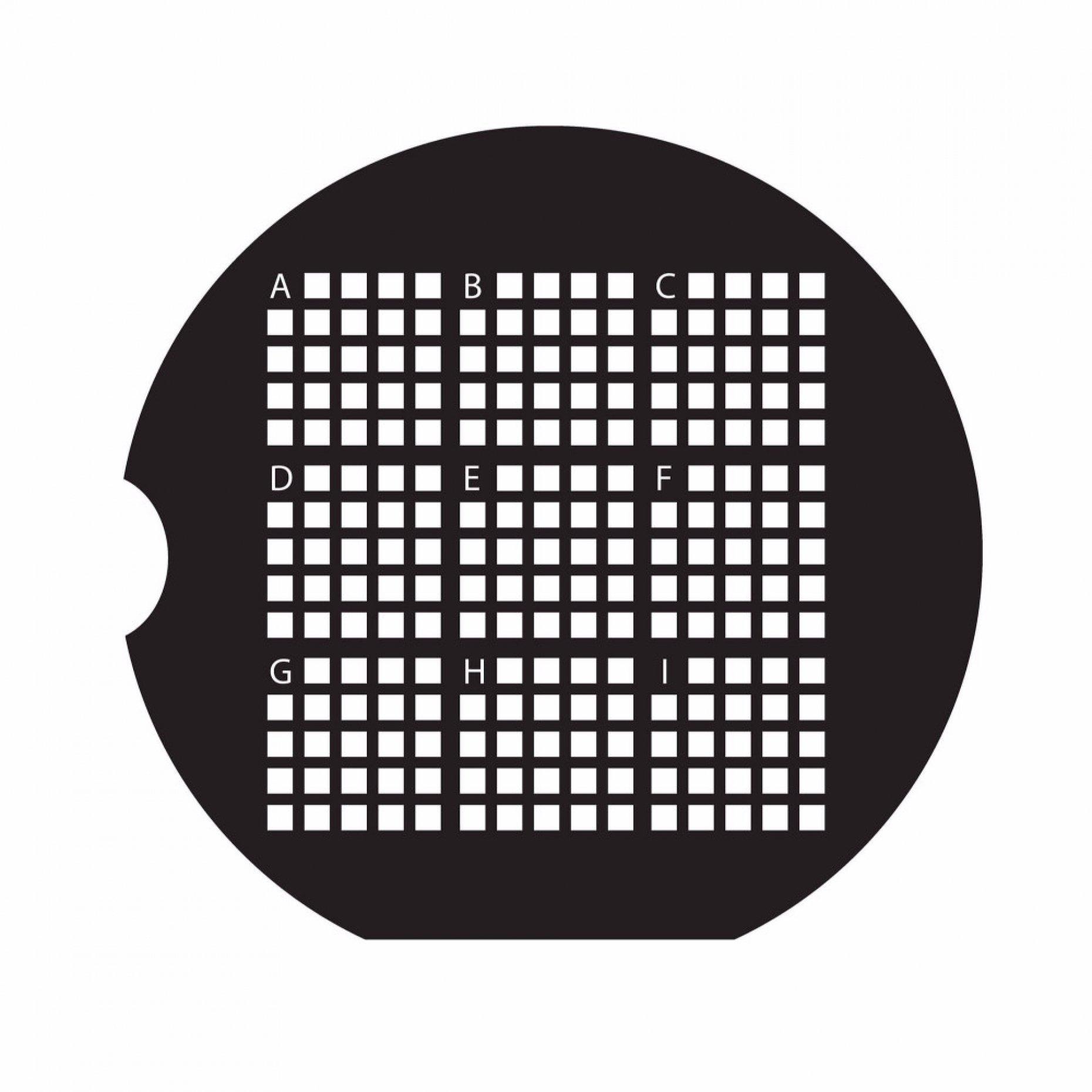 200 Mesh Finder Grid