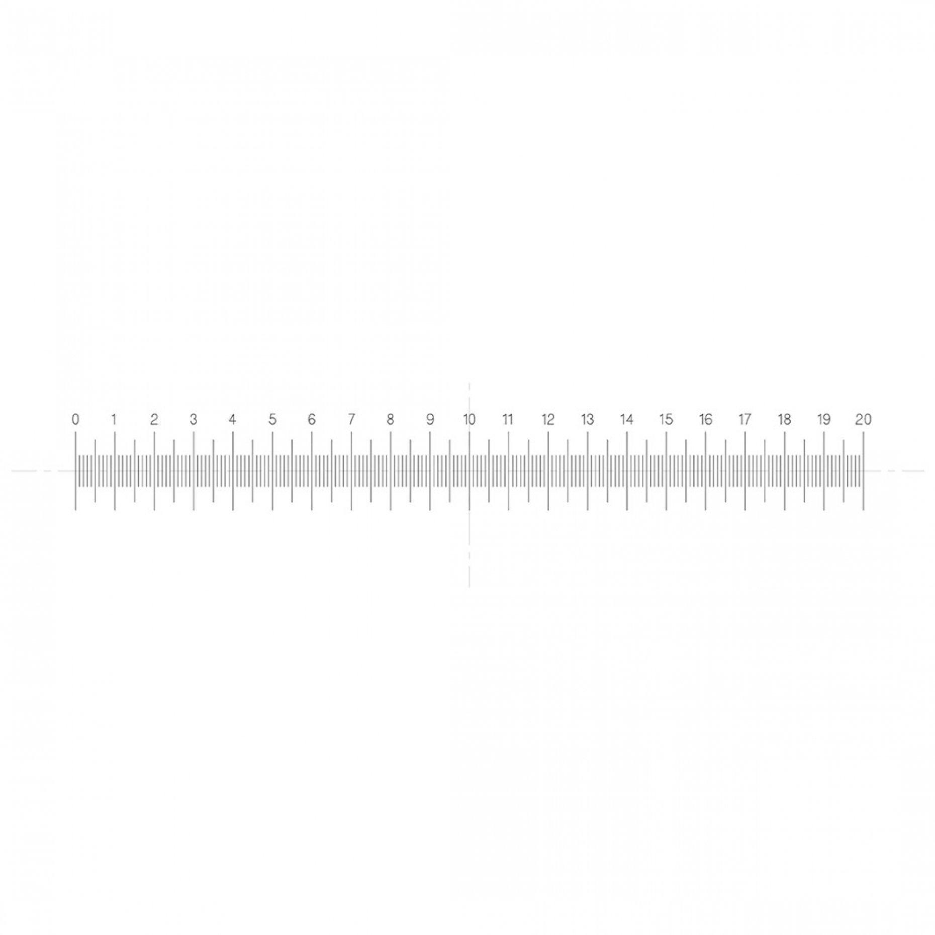 NE120 Horizontal Scale 20mm/0.1mm Pattern